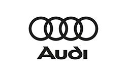 Audi_V1